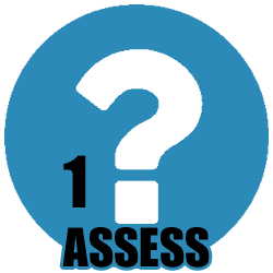 icons-ASSESS